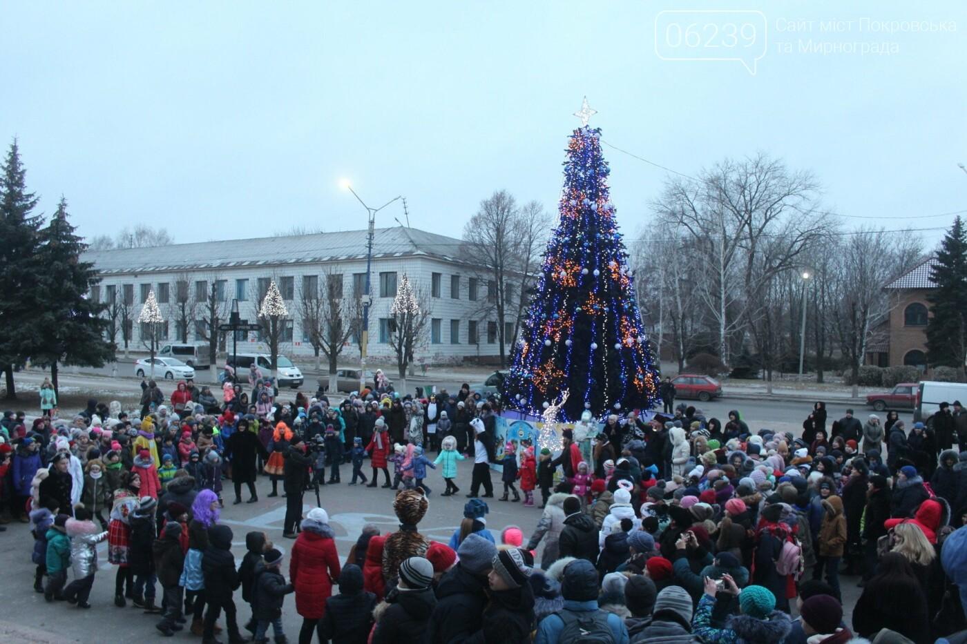 В Мирнограде торжественно открыли главную городскую ёлку , фото-10
