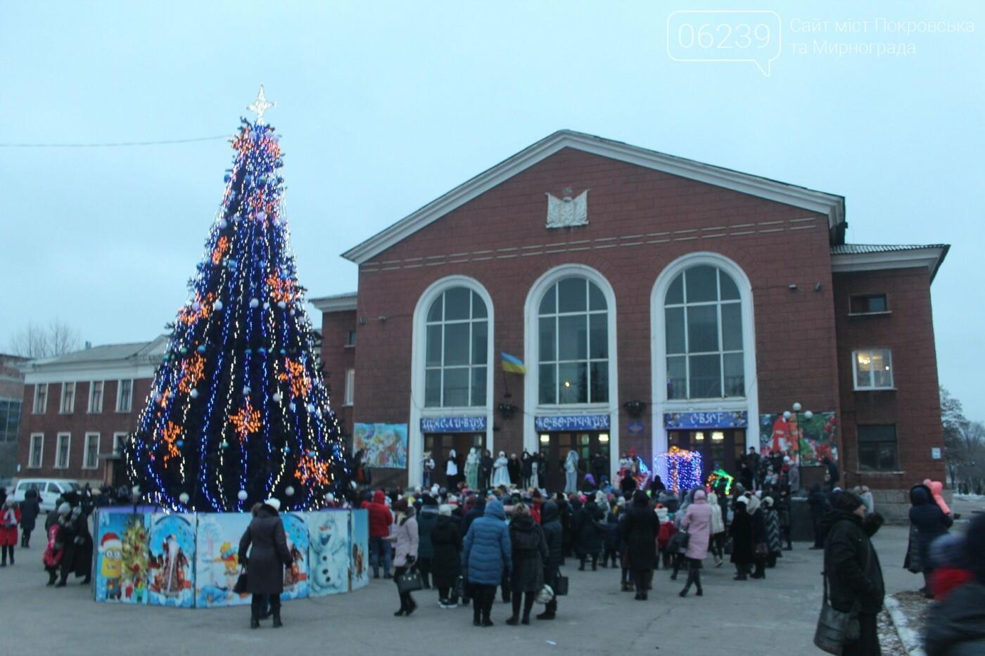 В Мирнограде торжественно открыли главную городскую ёлку , фото-5