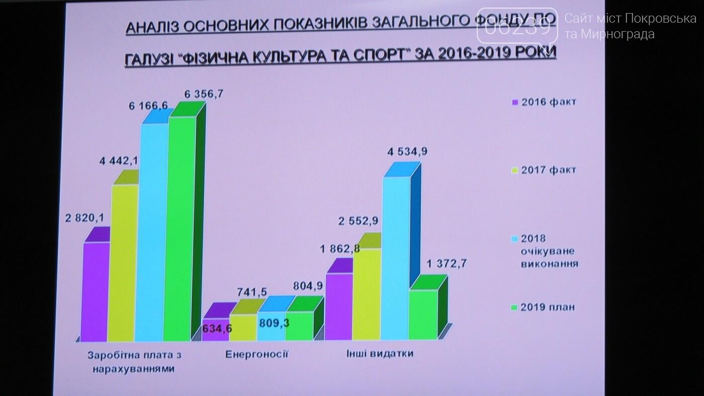 """Бюджет Покровска-2019: капитальный ремонт ДЮСШ и СК """"Факел"""", а также покупка нового ринга, фото-3"""