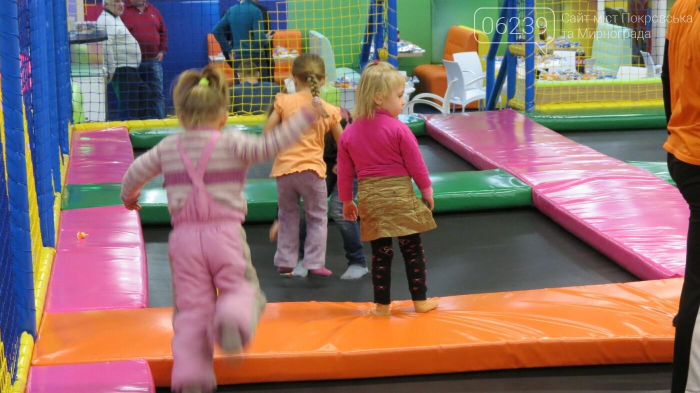 Активные предприниматели Покровска организовали праздник для детей из приютов, фото-20