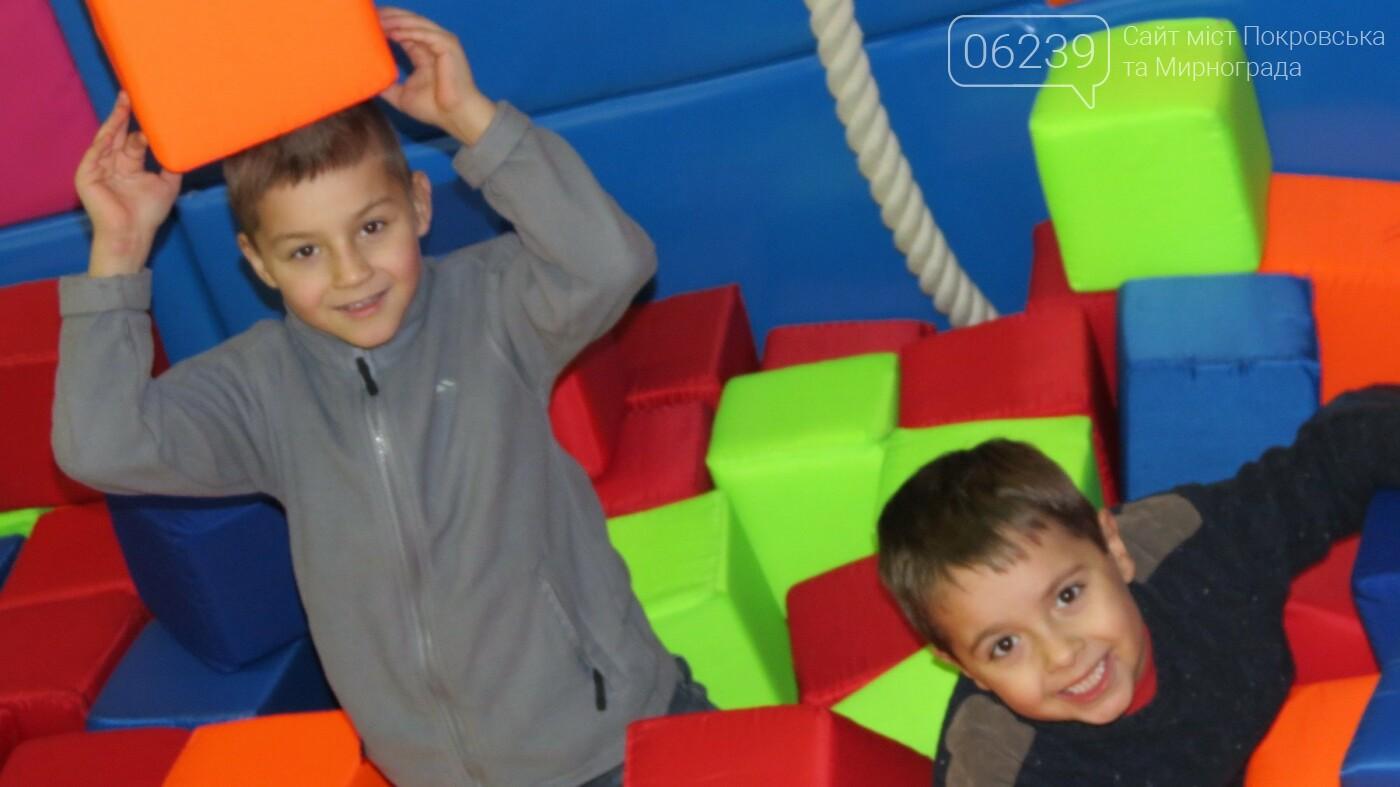 Активные предприниматели Покровска организовали праздник для детей из приютов, фото-9