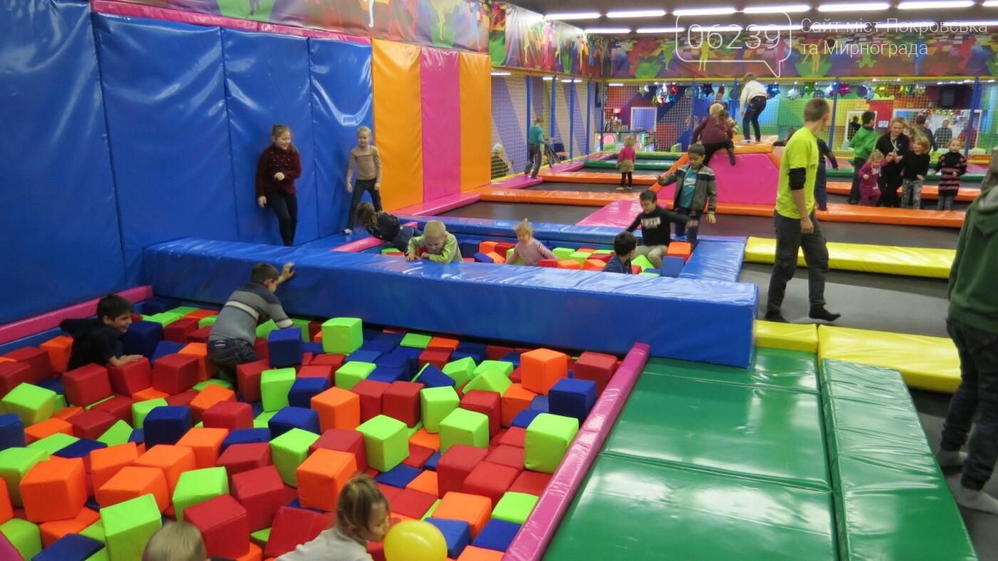 Активные предприниматели Покровска организовали праздник для детей из приютов, фото-17