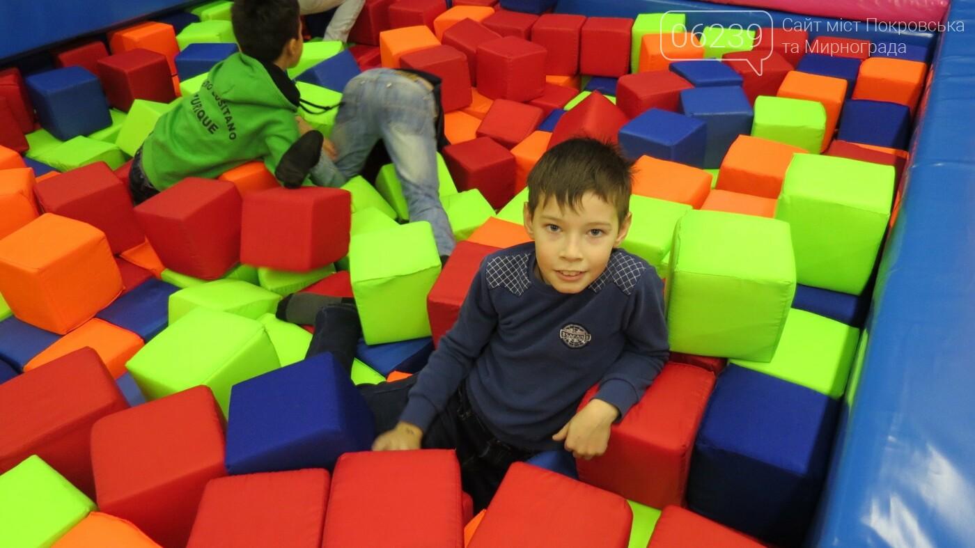 Активные предприниматели Покровска организовали праздник для детей из приютов, фото-40