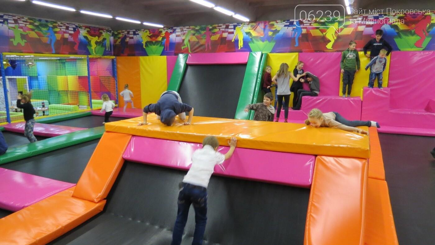Активные предприниматели Покровска организовали праздник для детей из приютов, фото-24
