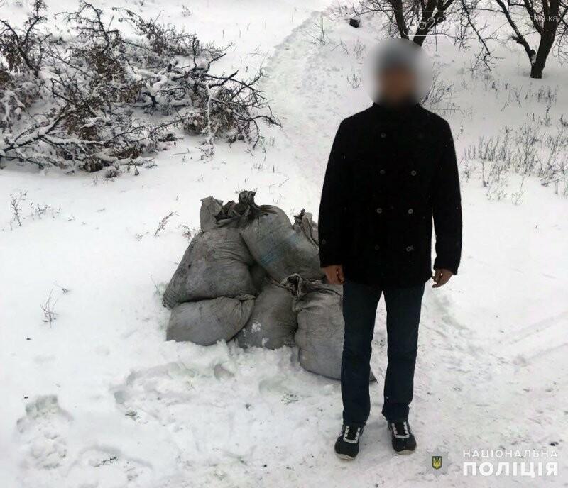 Покровские правоохранители задержали похитителя угля, фото-1