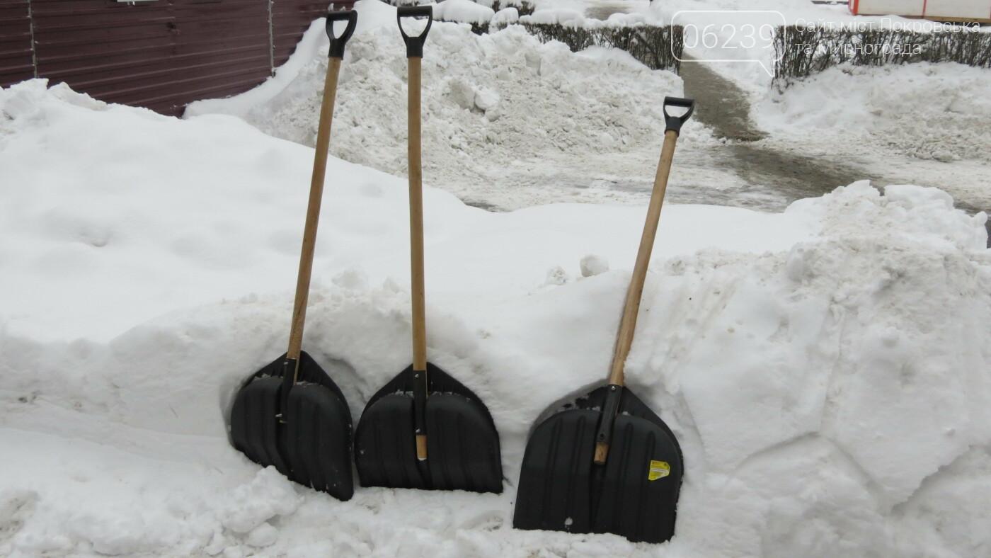 Сотрудники покровской мэрии взяли в руки лопаты, фото-7
