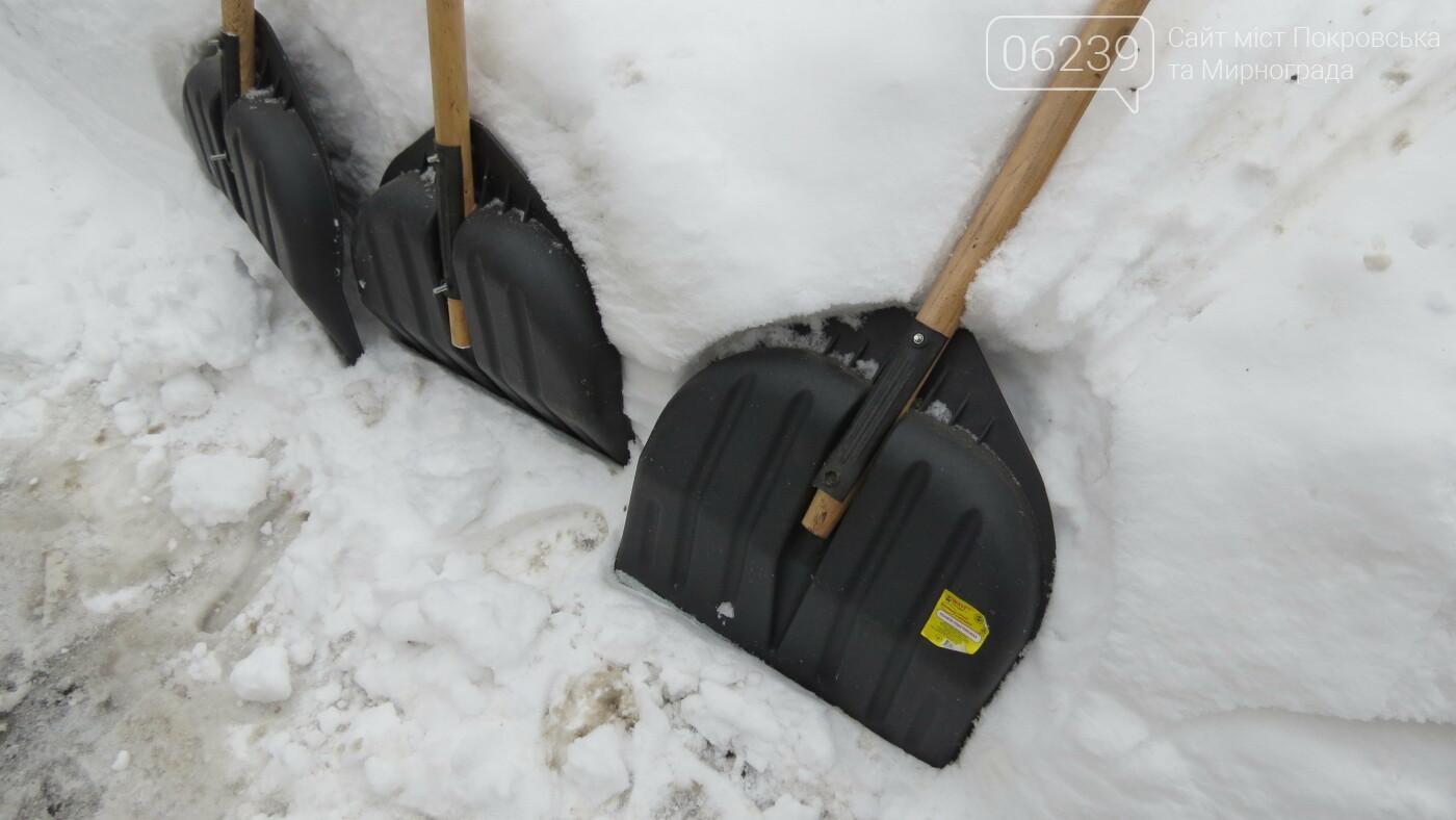 Сотрудники покровской мэрии взяли в руки лопаты, фото-6