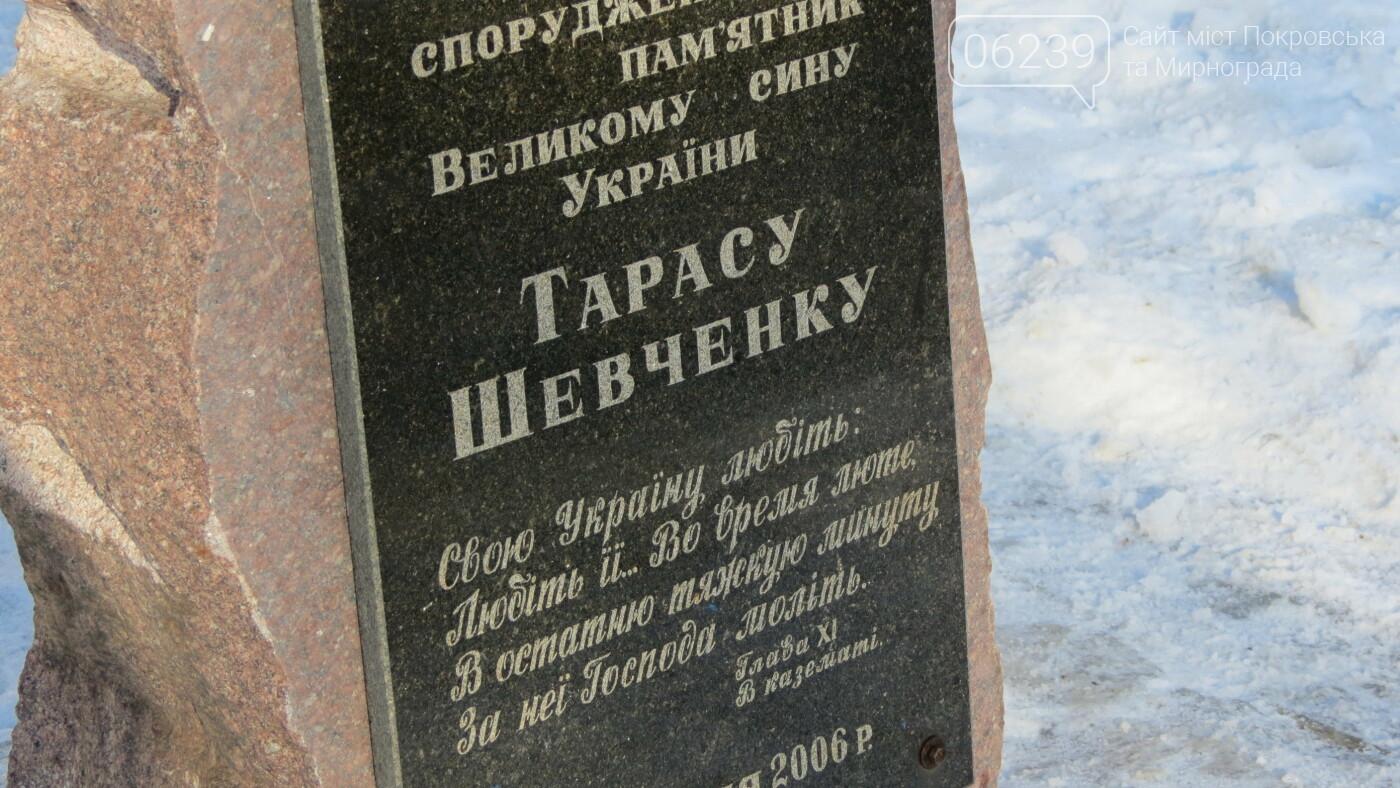 Покровчане отмечают День Соборности Украины, фото-7
