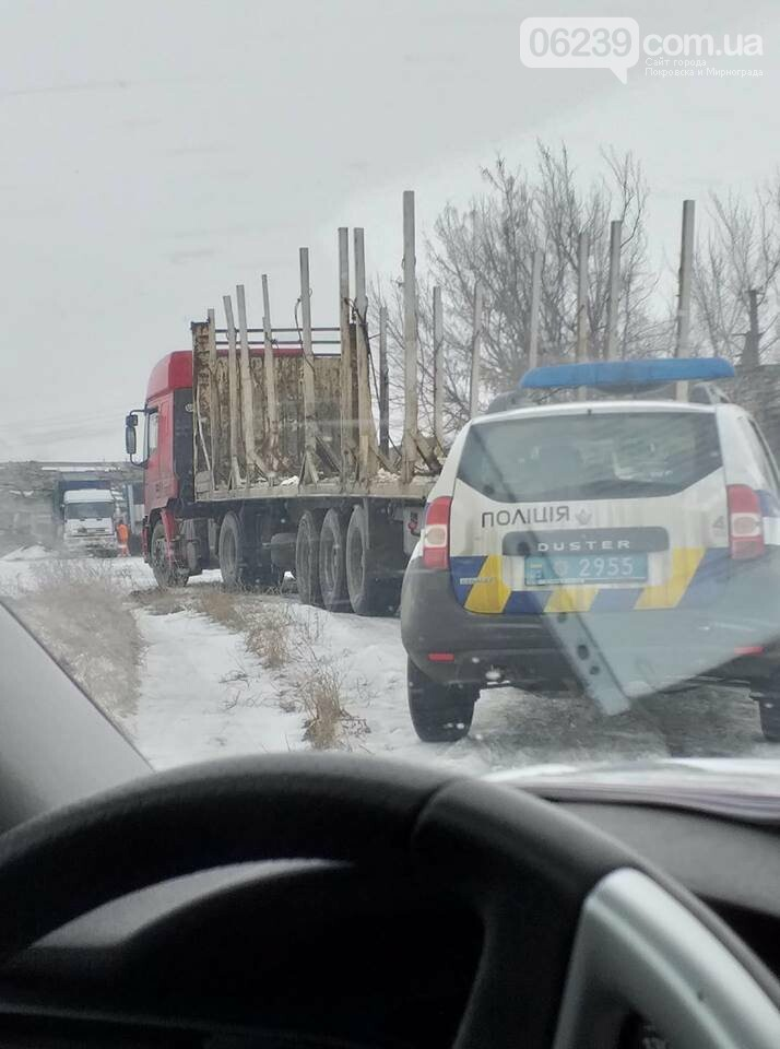 Скандальный зоопарк Падалко в Покровске: оставшихся животных забрать не дали, три медведя при смерти, фото-3