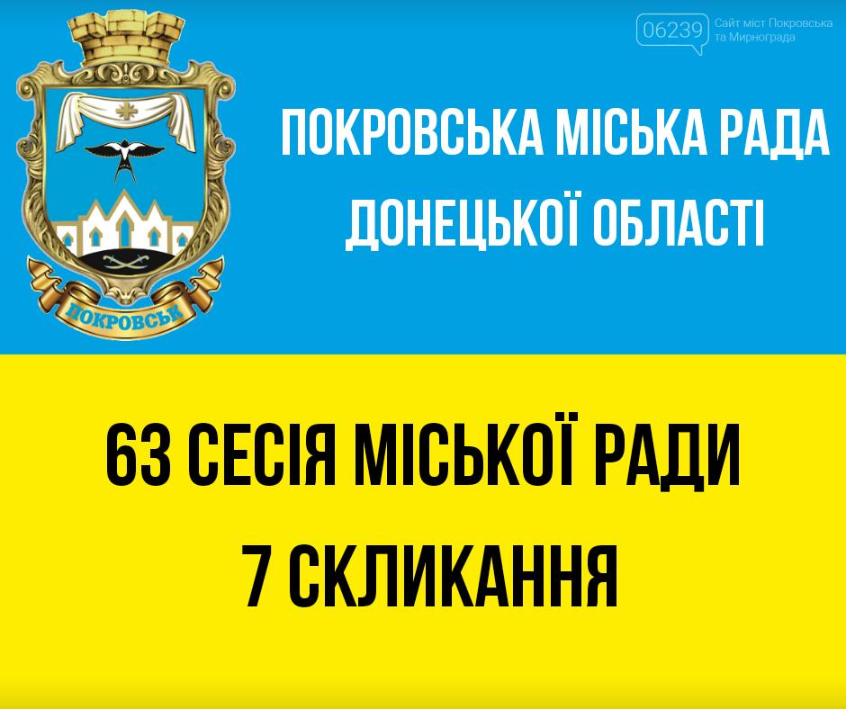 Сессии депутатов Покровского горсовета будут транслировать онлайн в Facebook , фото-1