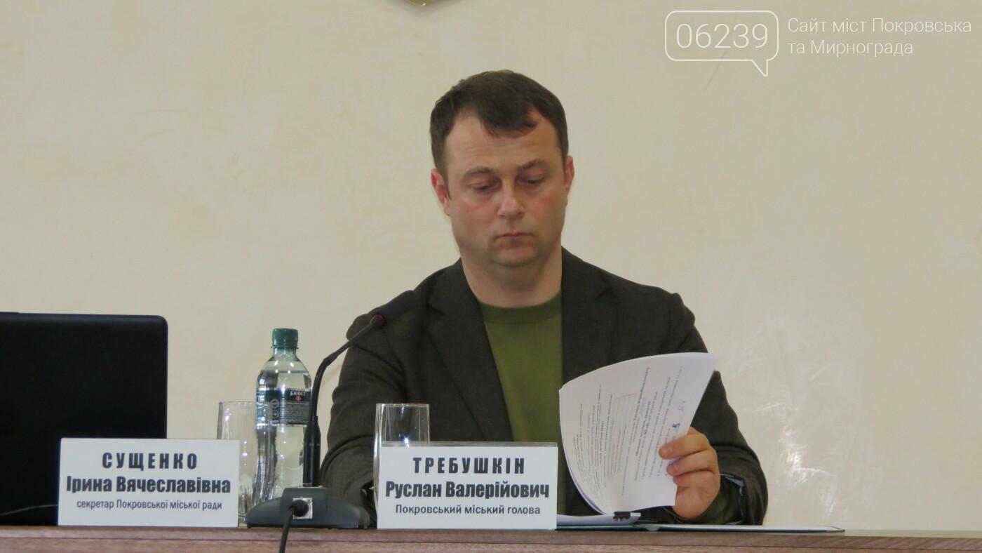 Новым замом Требушкина назначена Елена Олехнович , фото-4