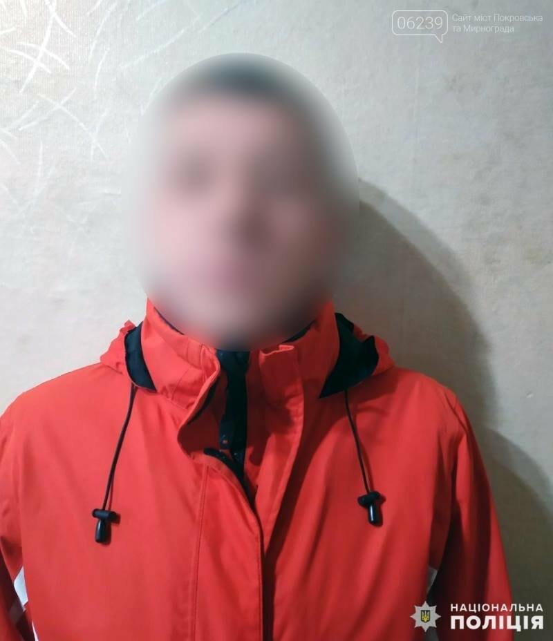 В Покровске задержан мошенник, фото-1