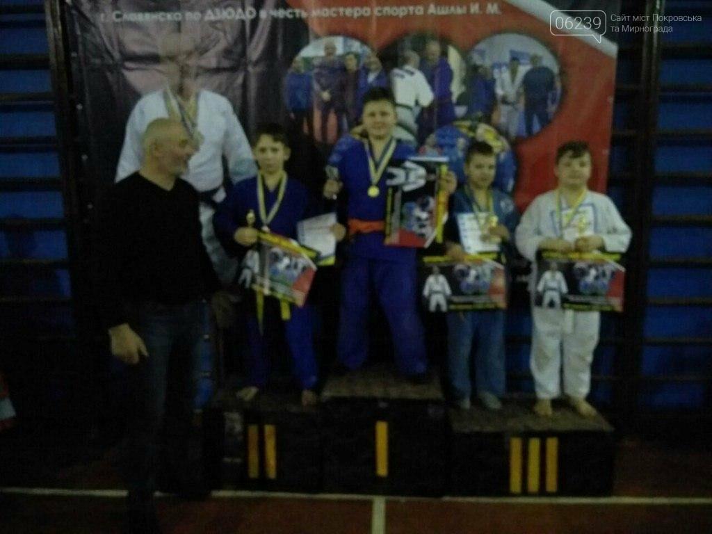 Мирноградские дзюдоисты успешно выступили на соревнованиях в Славянске , фото-1