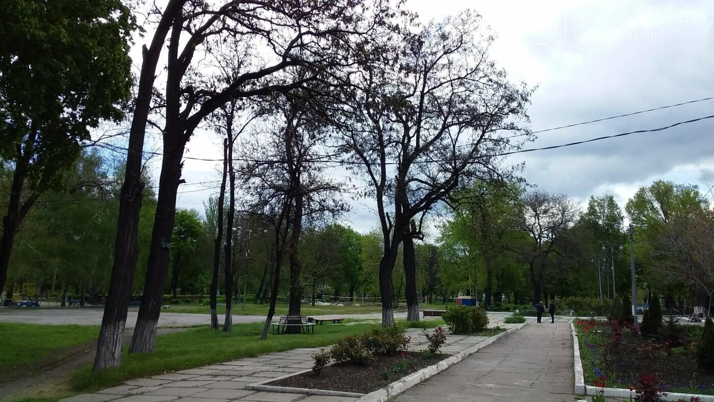 Мэр Мирнограда проинспектировал работы по реконструкции парка им.Гагарина, фото-5