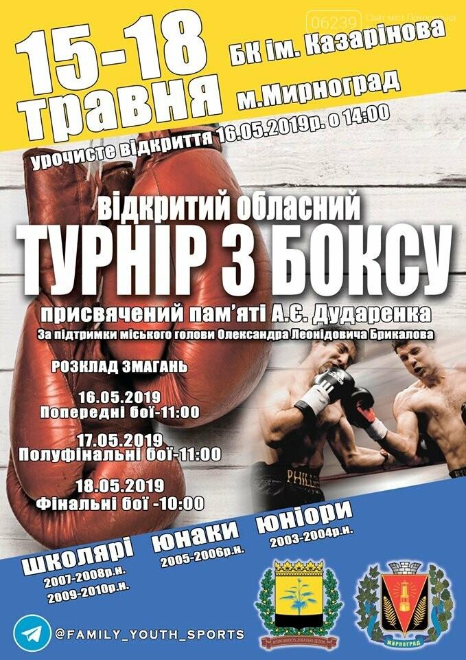 В Мирнограде проведут открытый областной турнир по боксу , фото-1