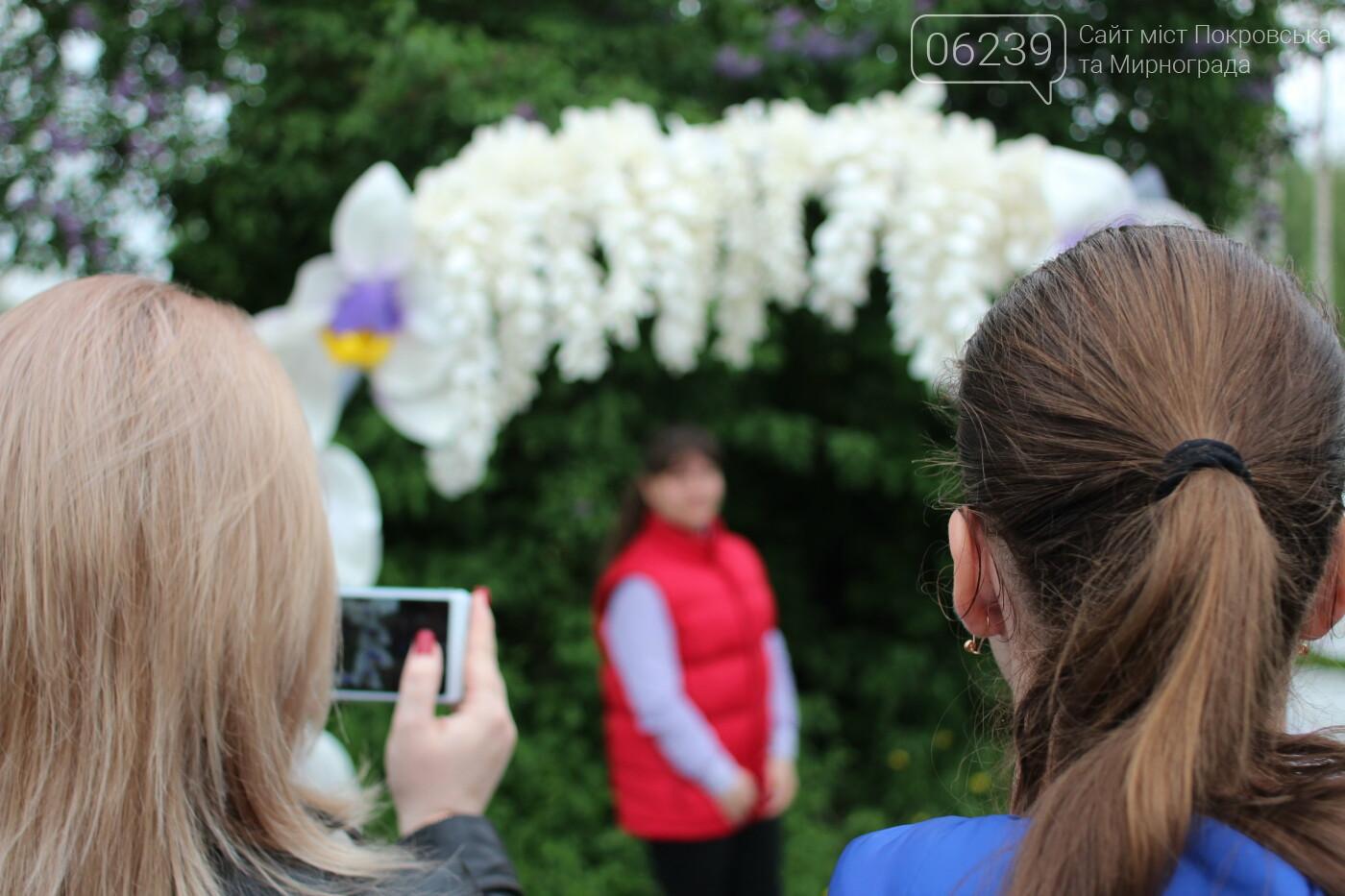 В Мирнограде ярко и красочно отметили Международный День семьи и День матери , фото-11