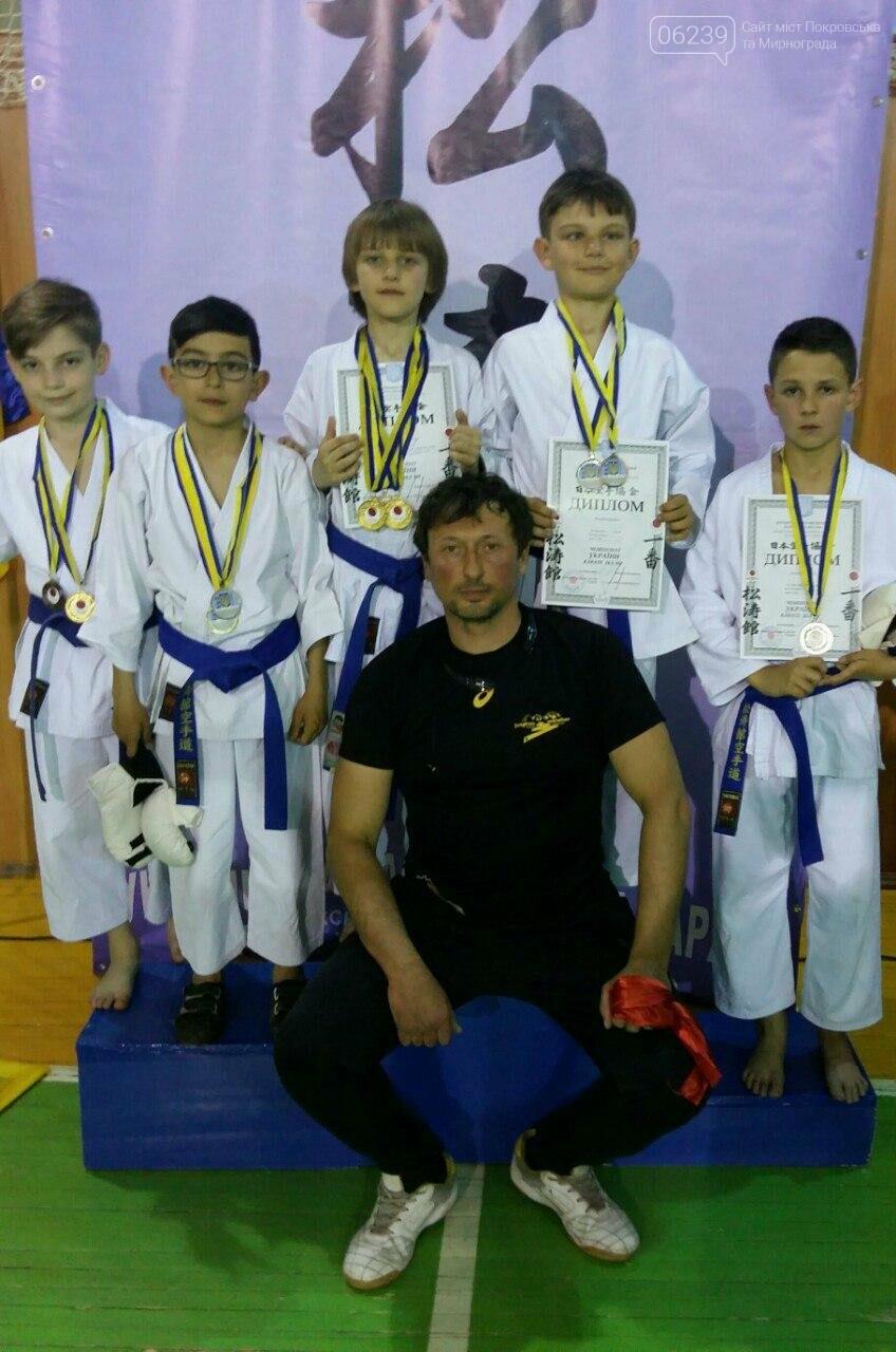 Команда Мирноградської асоціації карате здобула 8 призових місць на відкритому Чемпіонаті України з карате, фото-1