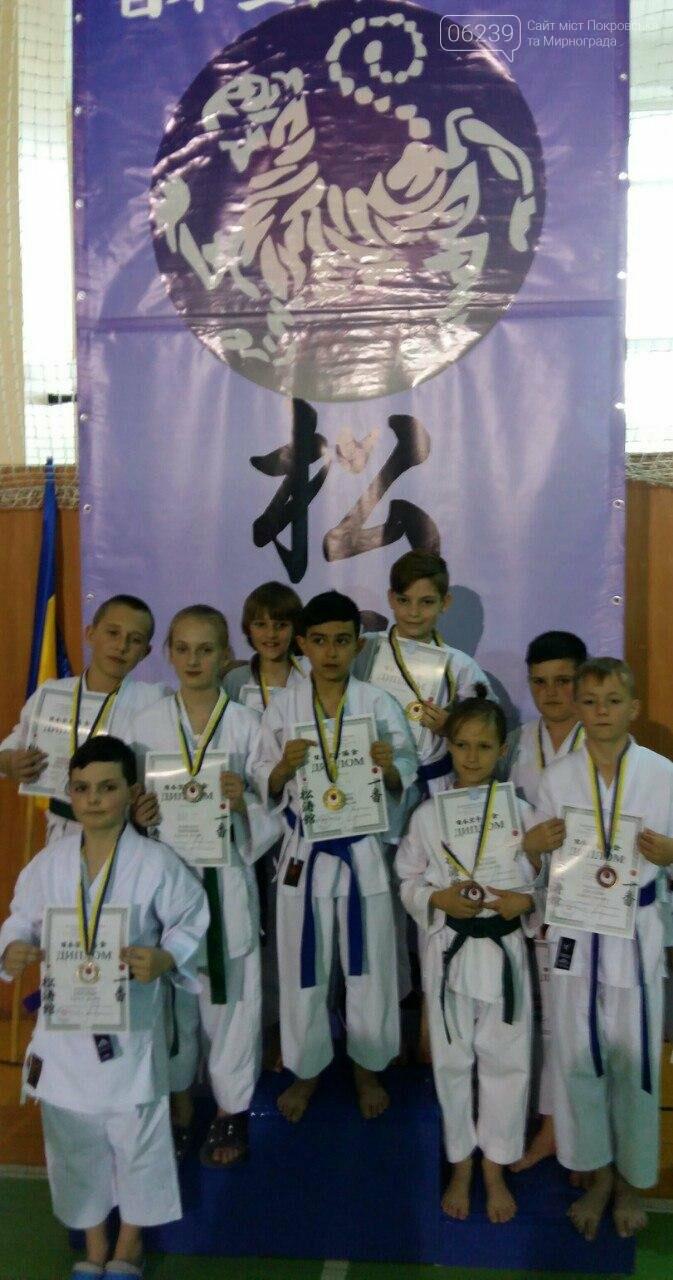 Команда Мирноградської асоціації карате здобула 8 призових місць на відкритому Чемпіонаті України з карате, фото-3