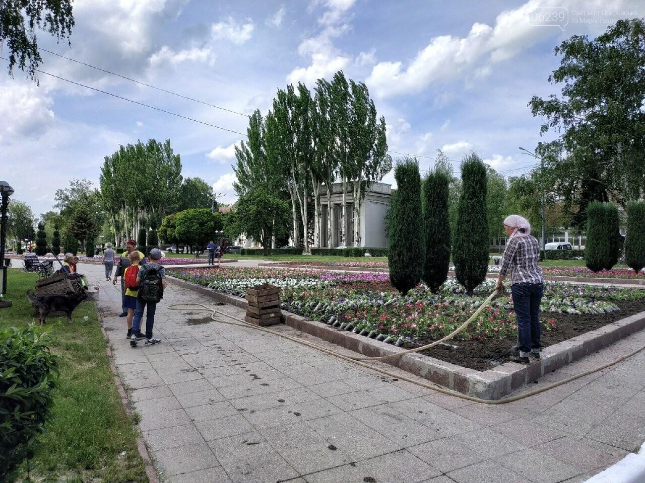 В Покровске на площади Шибанкова проходит подготовка ко Дню Европы, фото-5