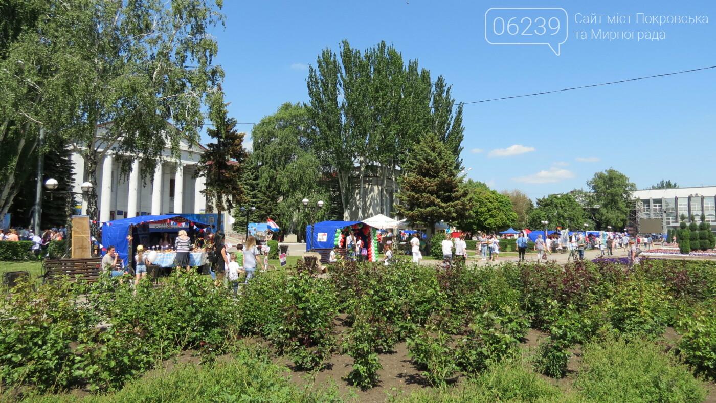 В Покровске на площади Шибанкова проходит празднование Дня Европы, фото-10