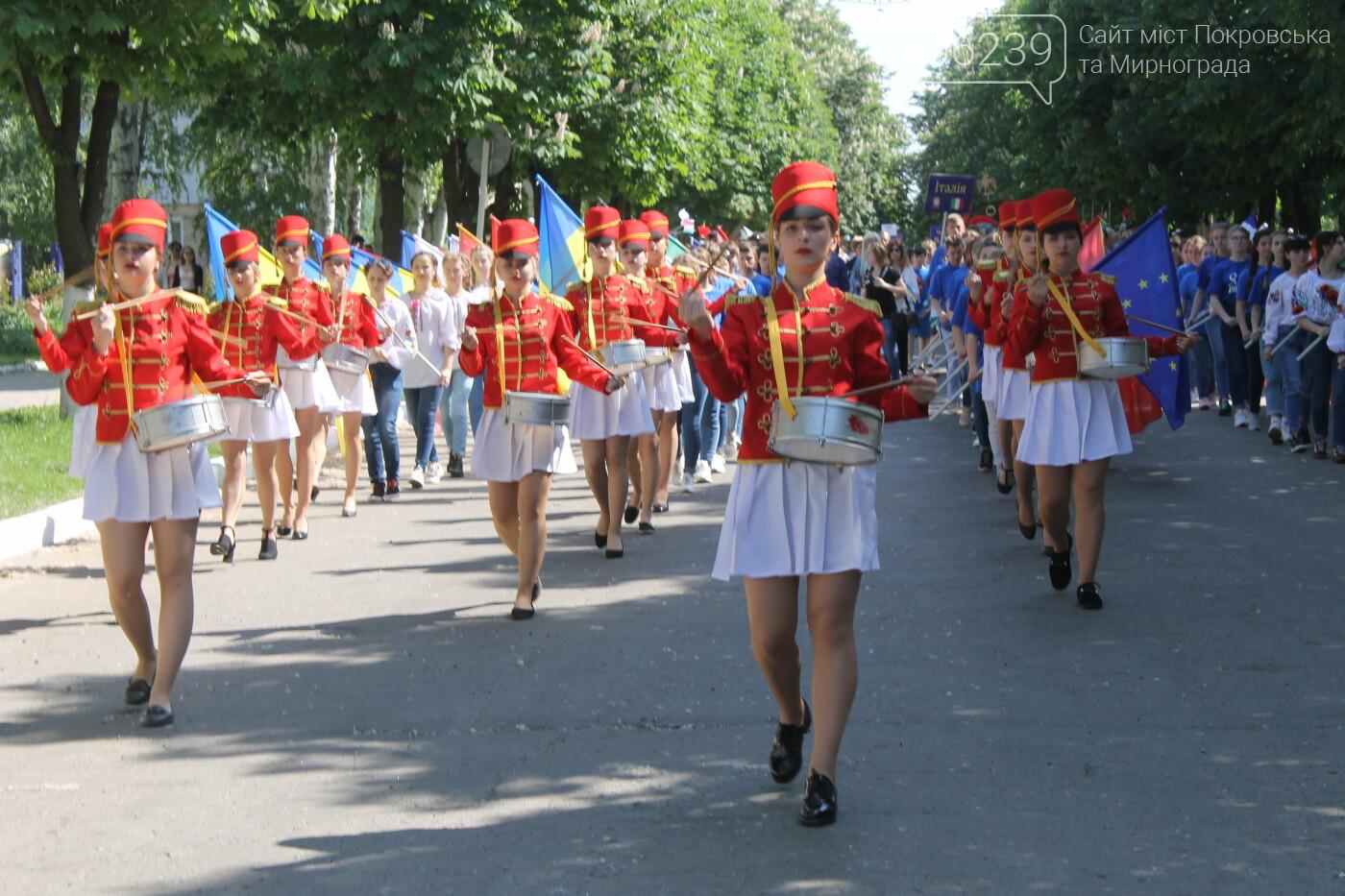 В Покровске День Европы отметили шествием, фото-15