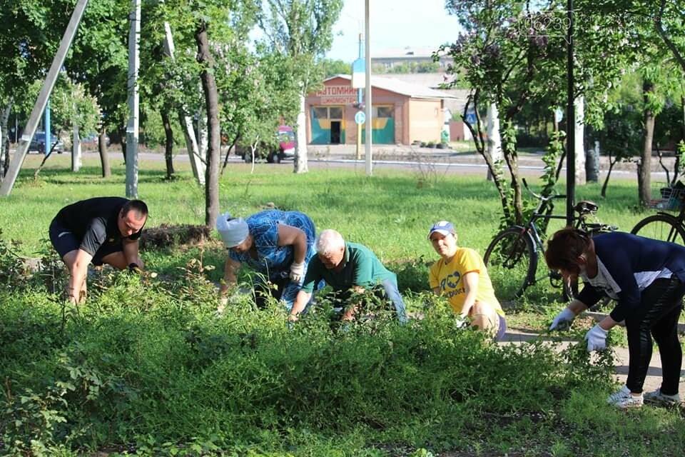 В Покровске провели очередной субботник, фото-2