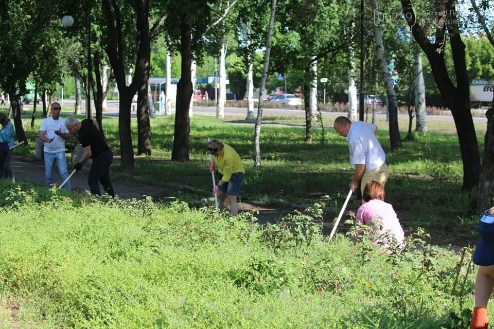 В Покровске провели очередной субботник, фото-4