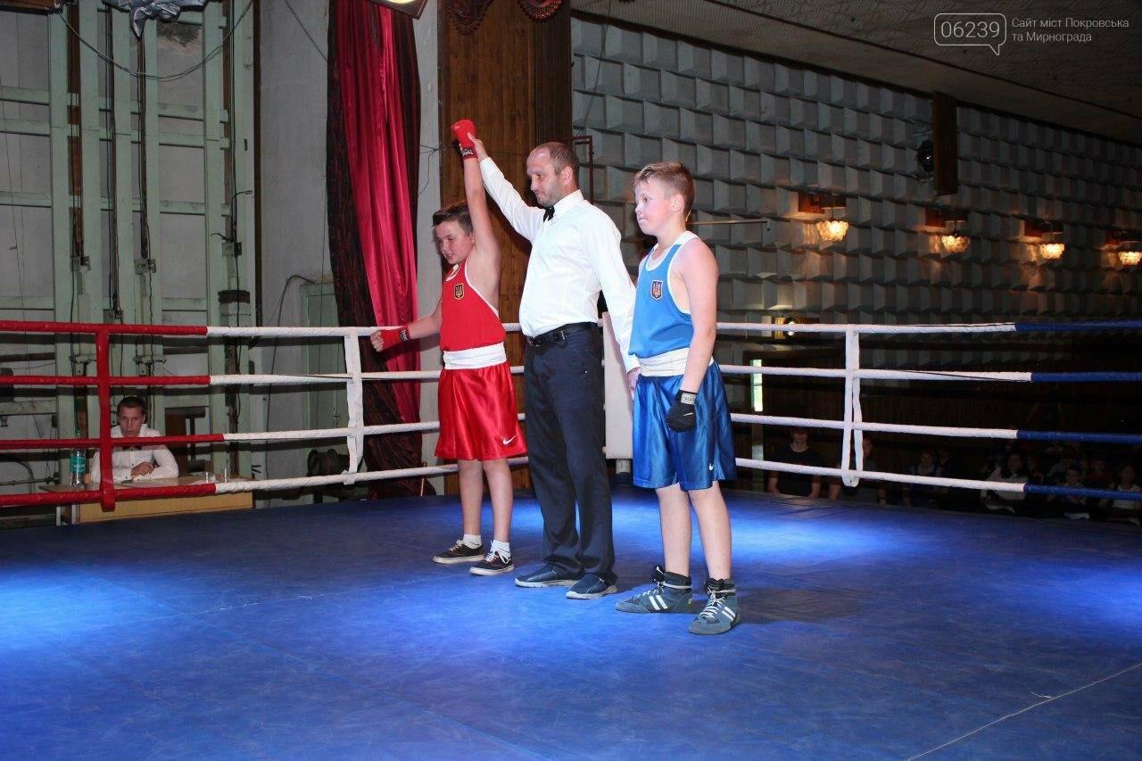 В Мирнограді відбувся відкритий обласний турнір з боксу, присвячений пам'яті Андрія Дударенка, фото-1