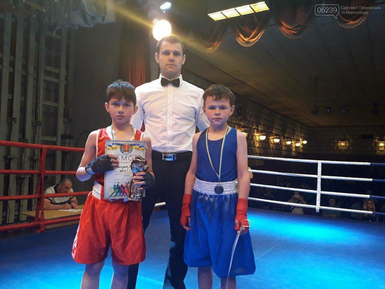 В Мирнограді відбувся відкритий обласний турнір з боксу, присвячений пам'яті Андрія Дударенка, фото-3