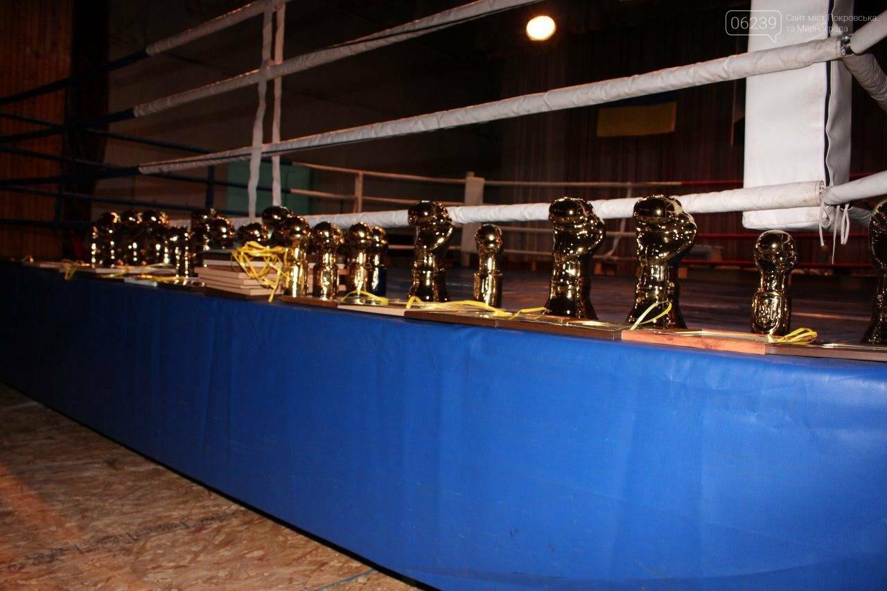 В Мирнограді відбувся відкритий обласний турнір з боксу, присвячений пам'яті Андрія Дударенка, фото-4