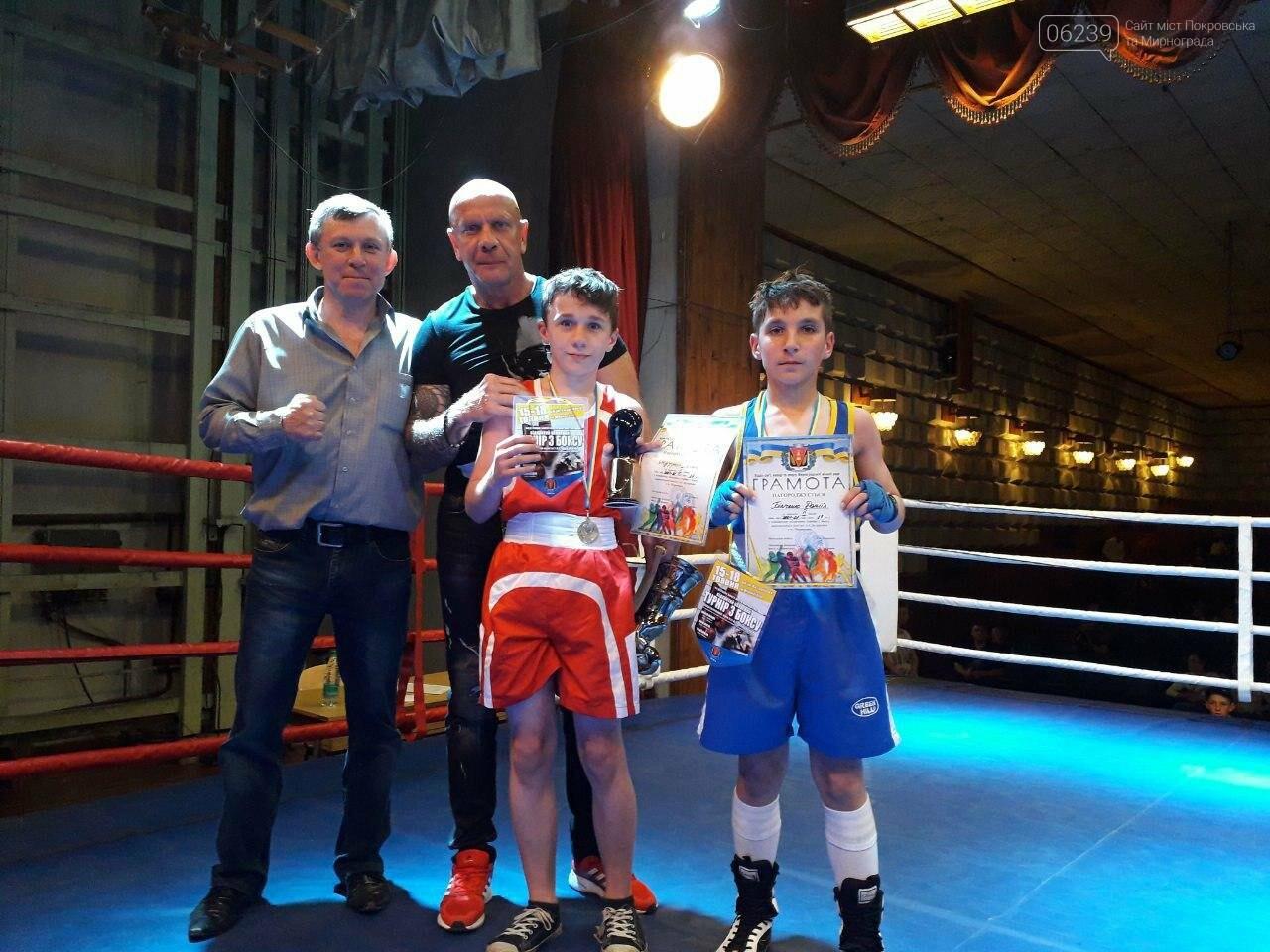 В Мирнограді відбувся відкритий обласний турнір з боксу, присвячений пам'яті Андрія Дударенка, фото-5