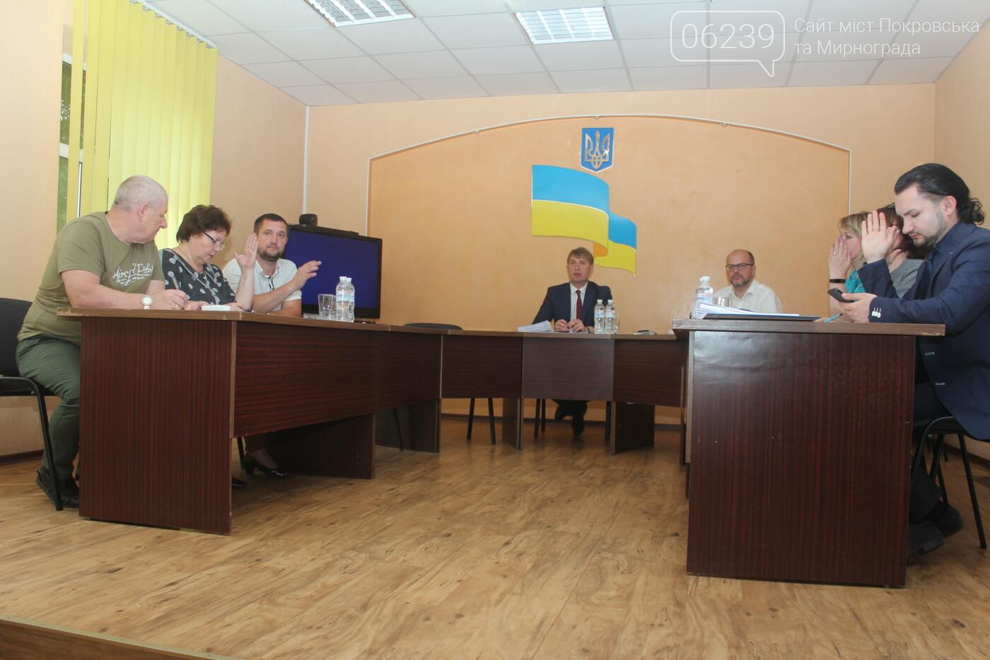 Туристический сбор и ликвидация шахты: в Мирнограде состоялась 60-я сессия горсовета, фото-3