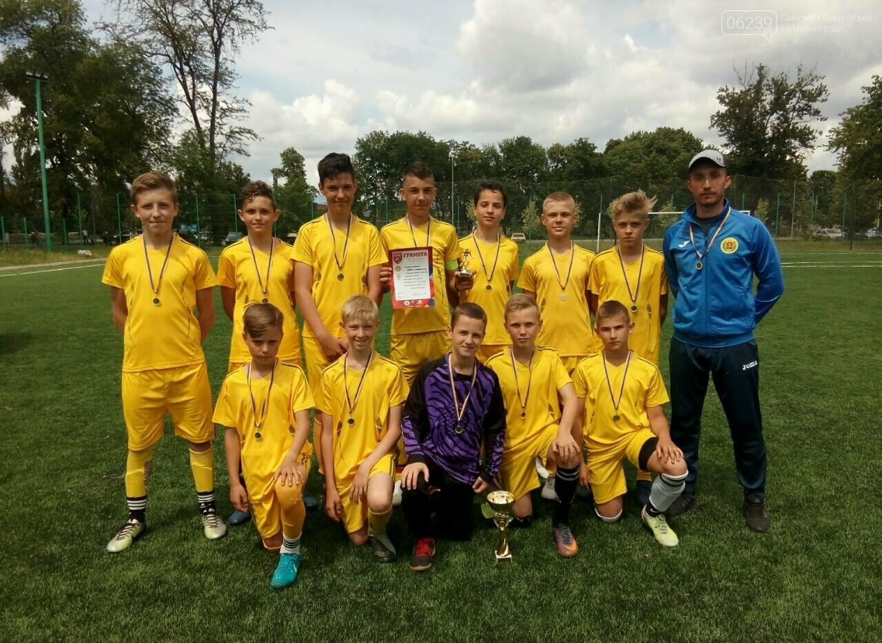 Футбольная команда из Мирнограда представит Донецкую область на Всеукраинских соревнованиях , фото-1