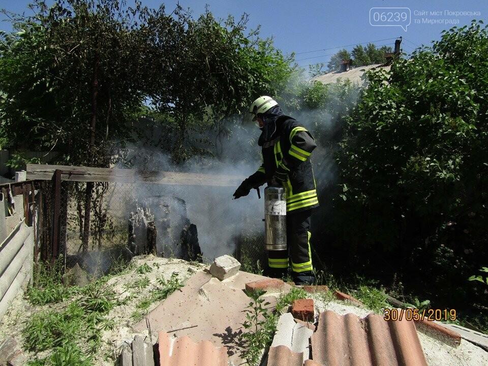 У Покровську рятувальники знищили рій шершнів на автобусній зупинці та на території дитячого садка, фото-3