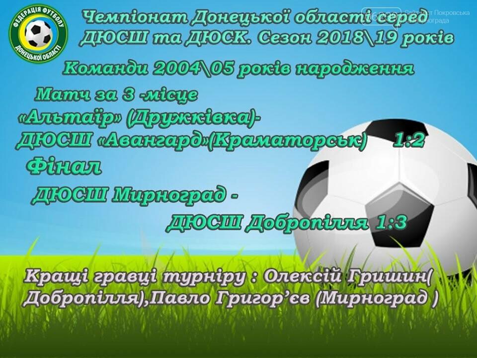 Воспитанники ДЮСШ Мирнограда стали серебряными призерами чемпионата области по футболу , фото-4