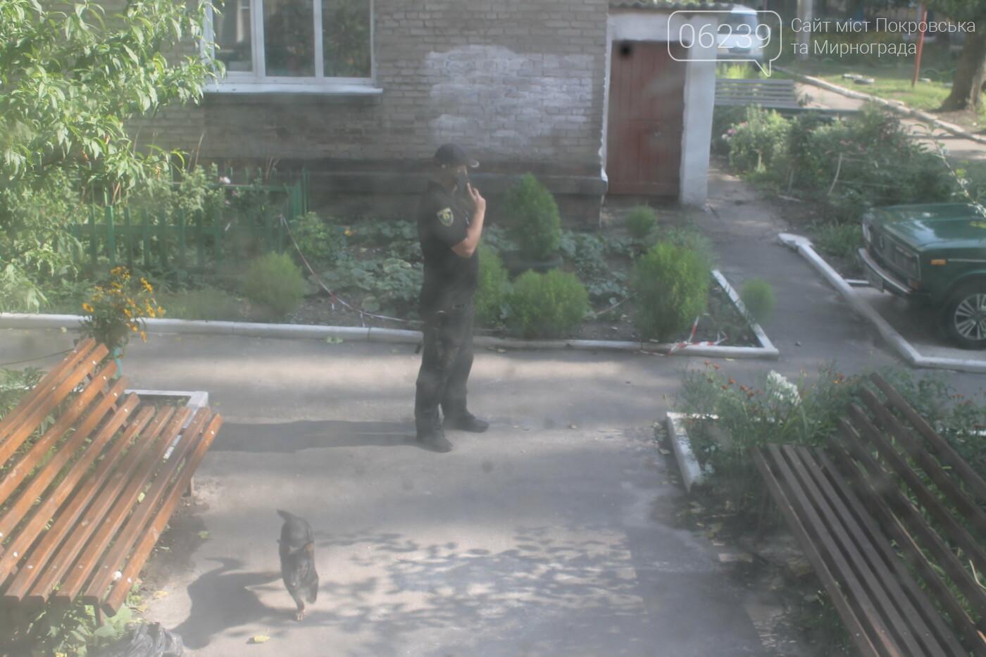 В одном из подъездов Покровска нашли бюллетени с выборов , фото-5