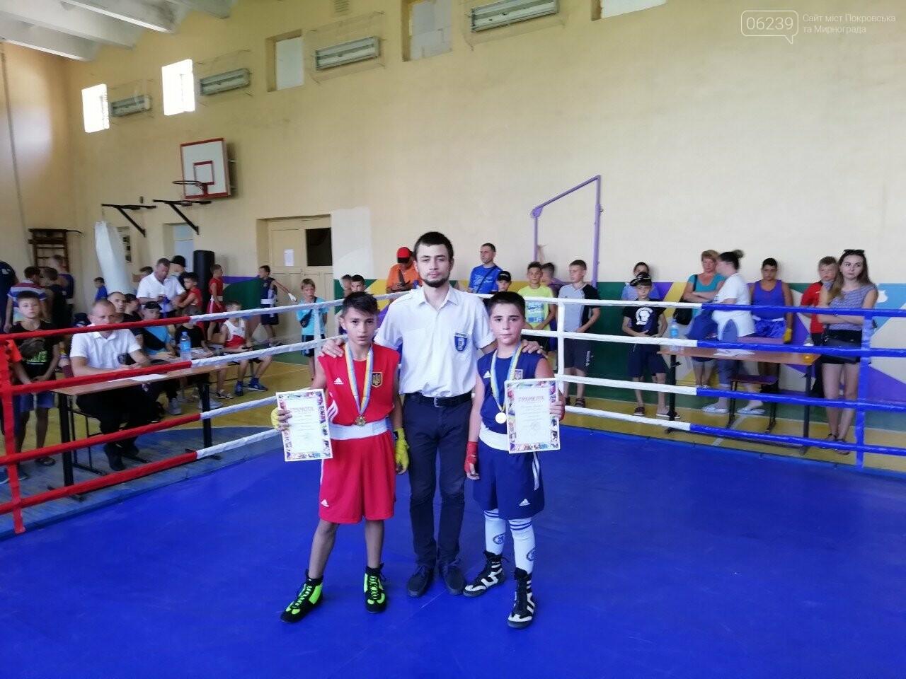 Покровські боксери завоювали золото на Всеукраїнському турнірі у Бердянську, фото-2