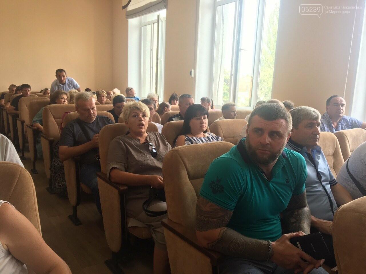 В Покровске началась внеочередная сессия горсовета, фото-2