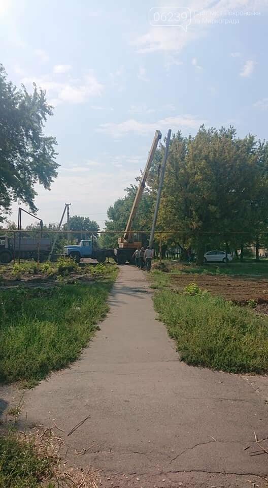 """Загадочная вырубка деревьев на """"5/6"""": в Мирнограде хотят обустроить новый сквер , фото-3"""