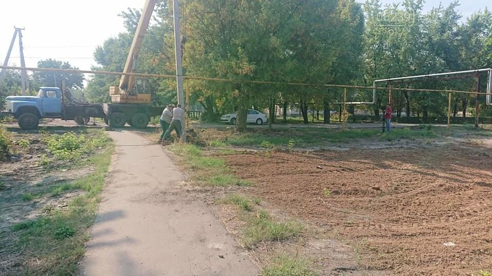 """Загадочная вырубка деревьев на """"5/6"""": в Мирнограде хотят обустроить новый сквер , фото-5"""