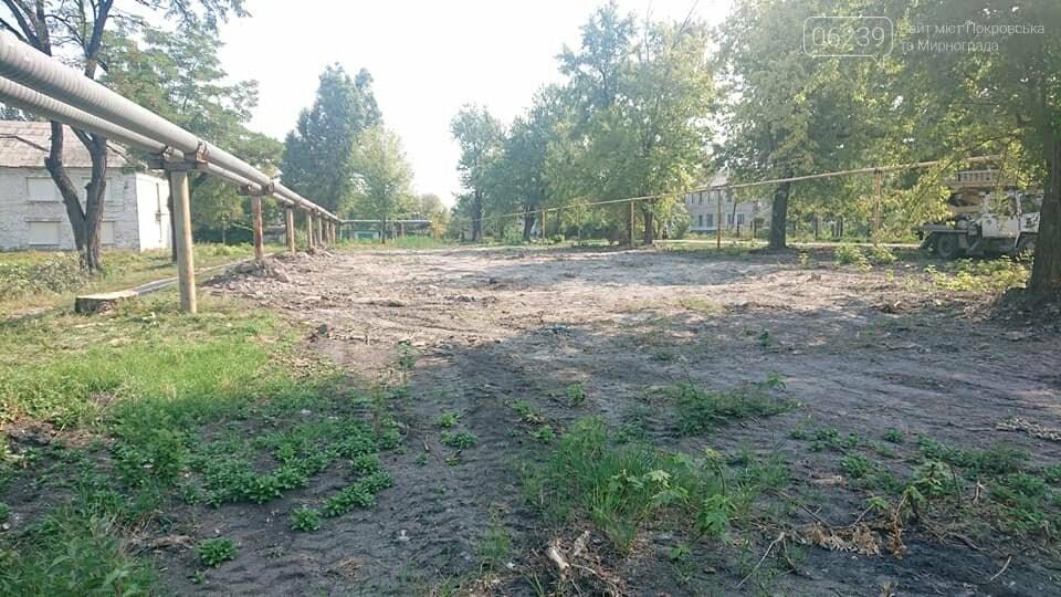 """Загадочная вырубка деревьев на """"5/6"""": в Мирнограде хотят обустроить новый сквер , фото-6"""
