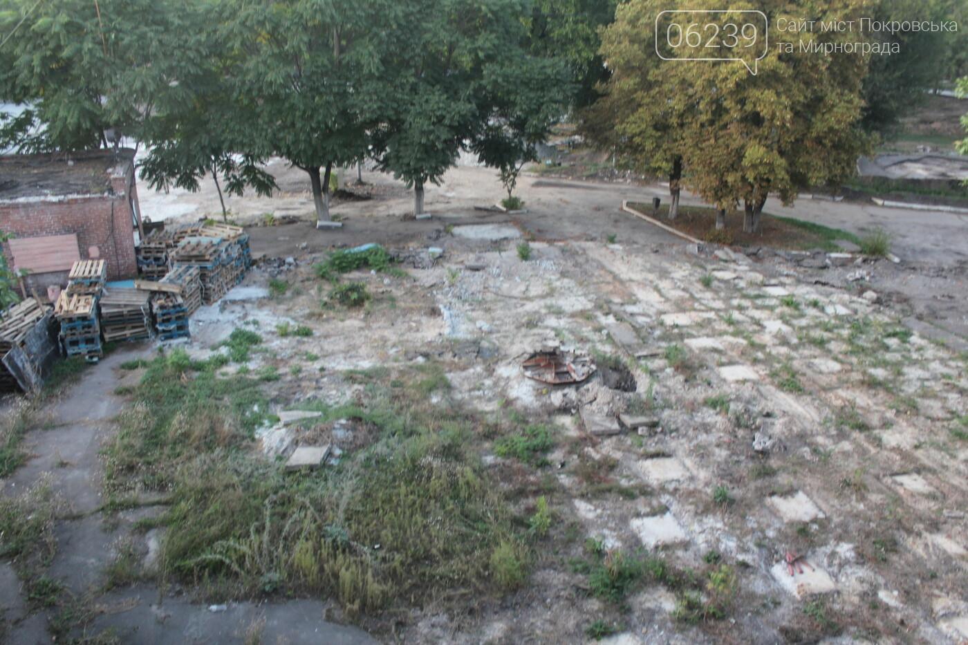 В Мирнограде продолжают реконструировать парк им. Гагарина. Когда ждать открытия?, фото-1