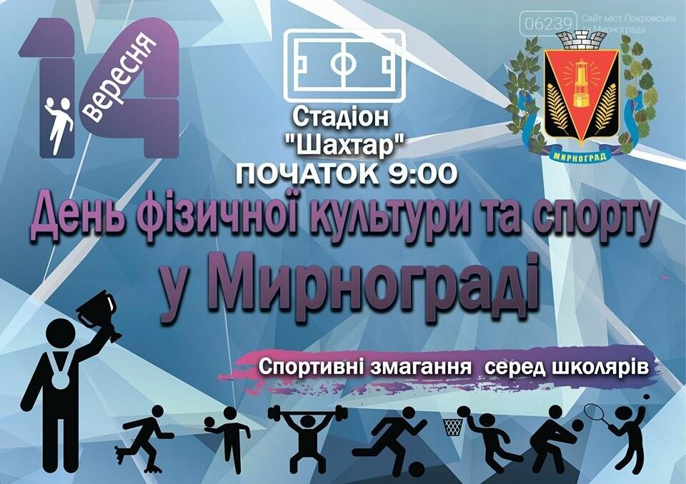 В Мирнограде отметят День физической культуры и спорта , фото-1