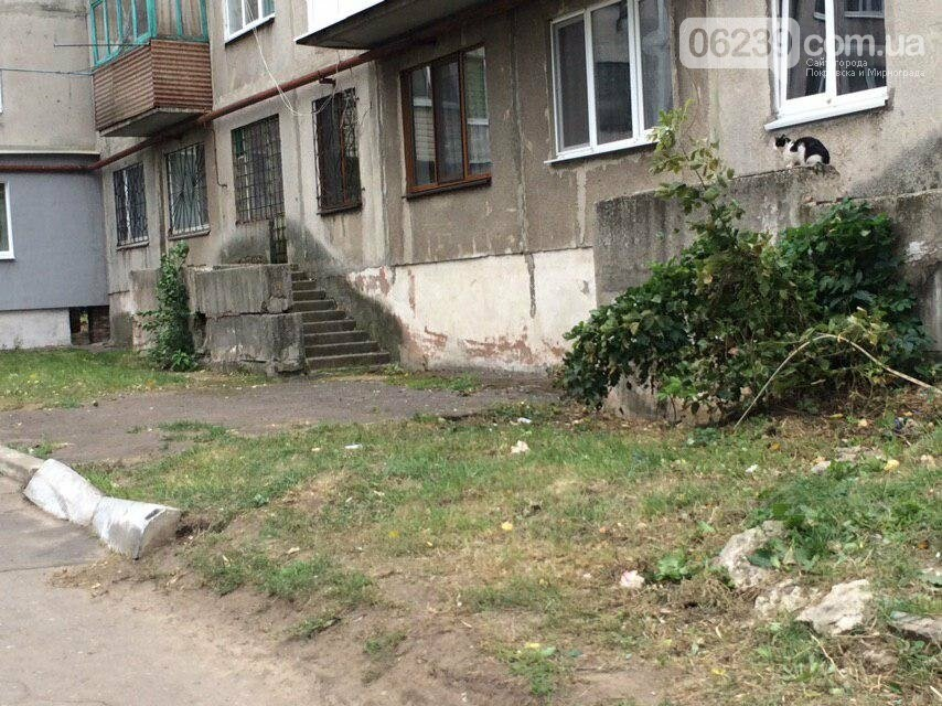 Полиция выясняет обстоятельства смерти 42-летней женщины в Мирнограде (обновлено) , фото-2