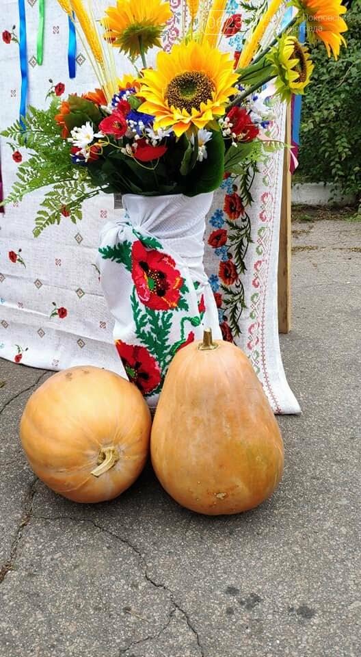 Традиційний вересневий ярмарок «Мирноградська осінь» вже став візитівкою Мирнограду, фото-4