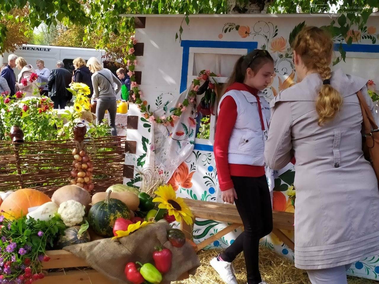 На выходных в Мирнограде состоялся яркий и масштабный праздник «Мирноградская осень» - фотоотчет , фото-1