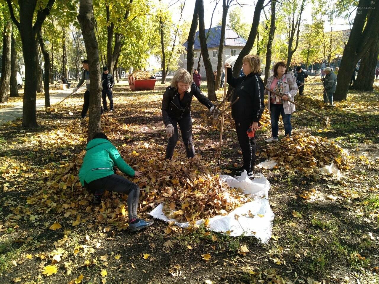 В Покровске провели первый осенний субботник, фото-3