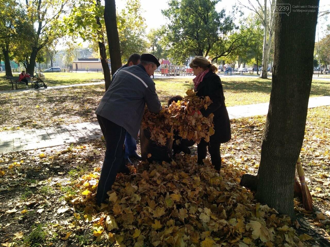 В Покровске провели первый осенний субботник, фото-8