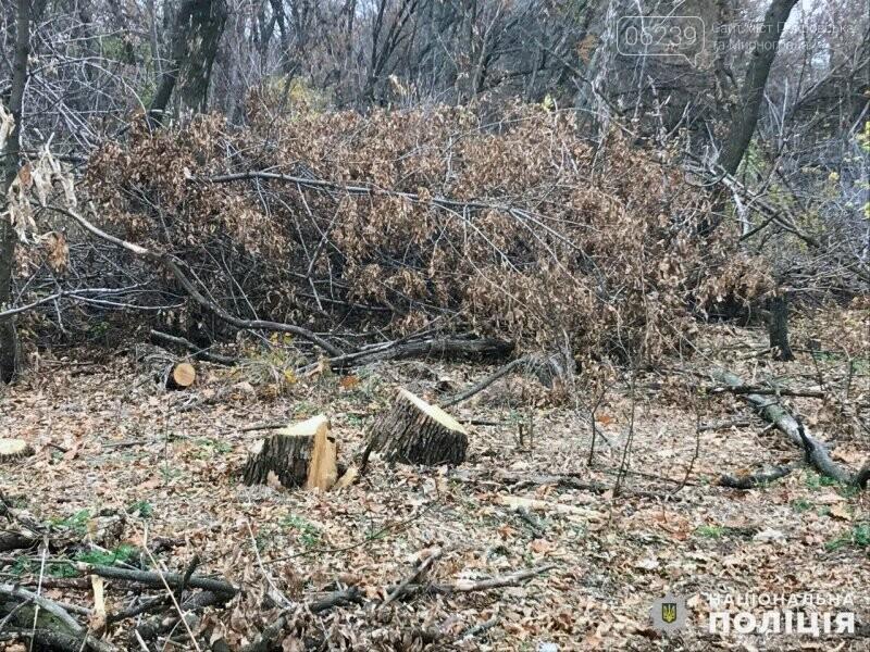 В Гришино задержаны шестеро «лесорубов», фото-3