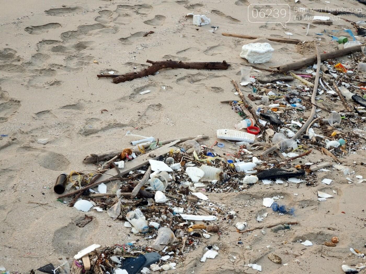 В Україні планують заборонити пластикові пакети, фото-1